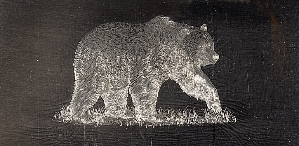 Master plate engraved by Jorge Peral for Canada Post $8 Grizzly stamp, 1997, Canadian Museum of History, D2006-07166