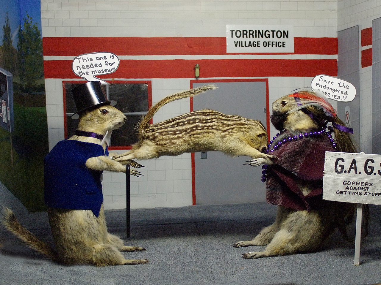 3 gophers in activist diorama scene