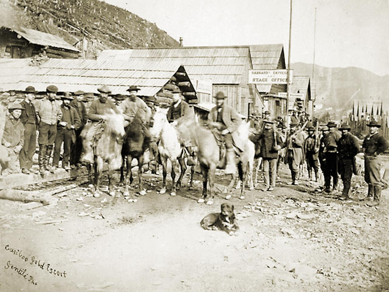 horses in front of wooden buildings