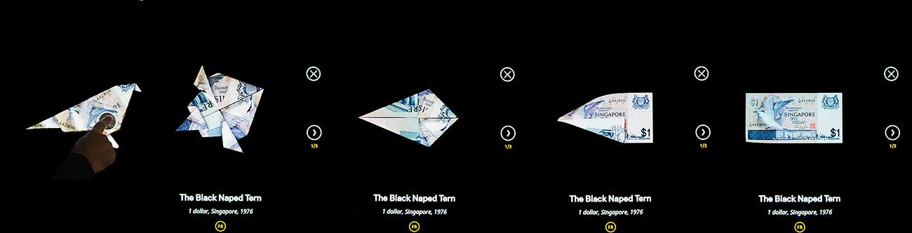 progression of unfolding origami on a screen