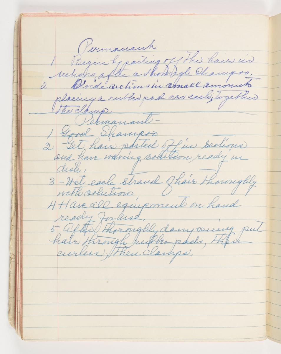 Viola Desmond - Page 36