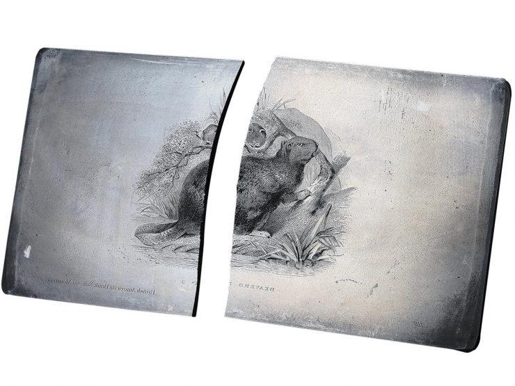 printing plate broken in half