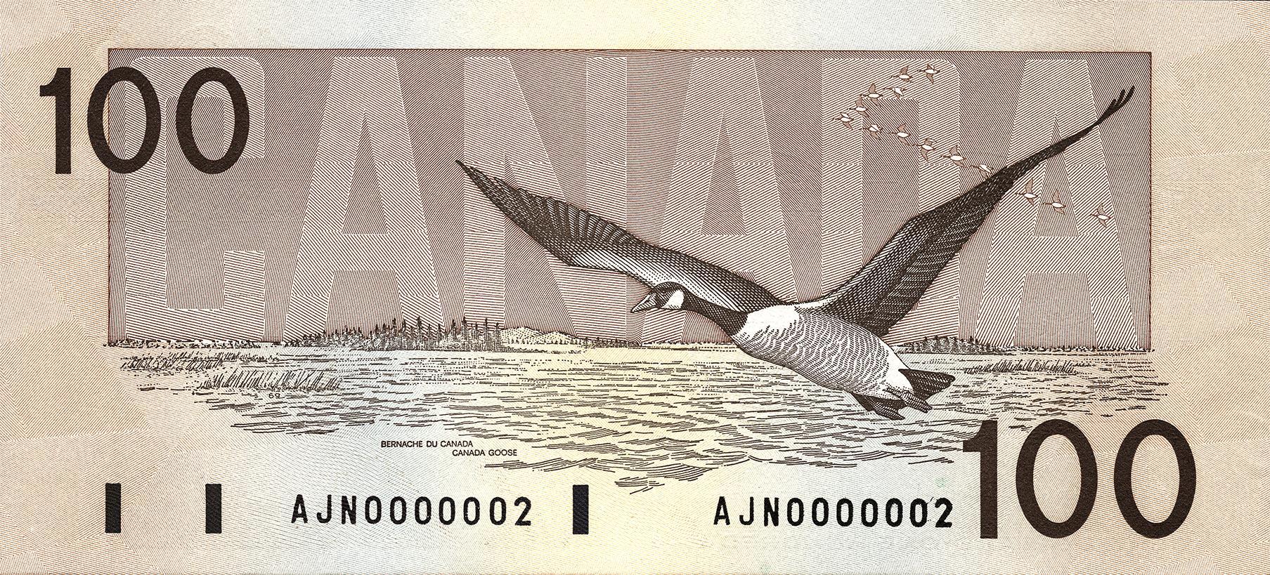 Bird 100 slideshow