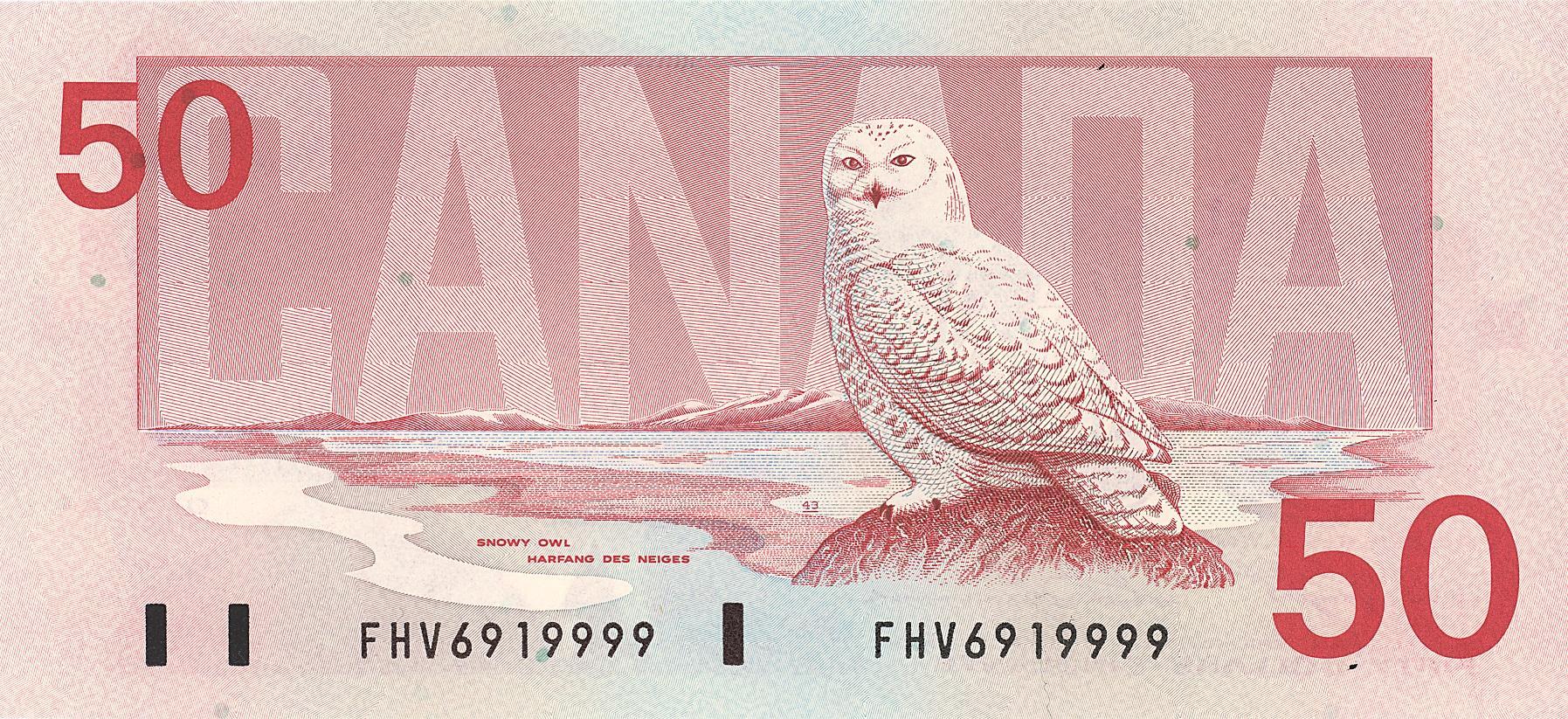 Bird 50 slideshow