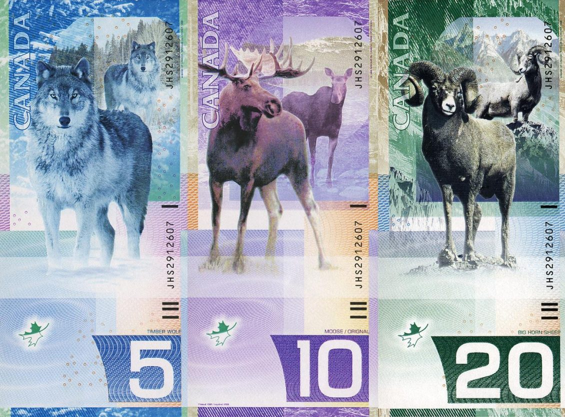 Three vertical bank notes featuring a wolf, a moose and a mountain goat.